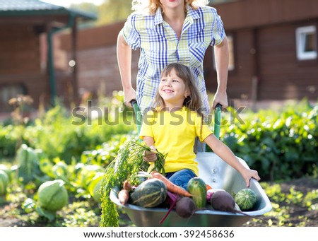 little child girl inside wheelbarrow with vegetables in the garden - stock photo