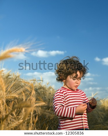 little child in a wheat field - stock photo