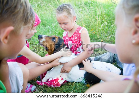 Little children playing with a dog on the grass