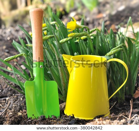 little colorful gardening tools in front of narcissus - stock photo