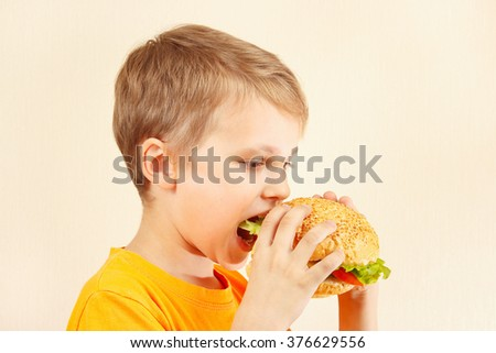 Little cut boy eating a tasty sandwich - stock photo