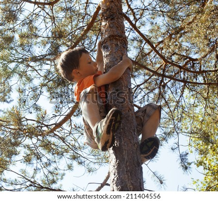 little cute boy climbing on tree hight - stock photo