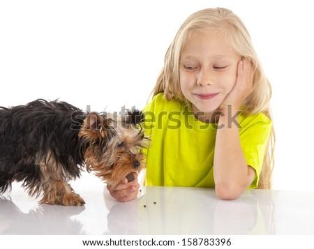 Little cute girl feeding her dog - stock photo