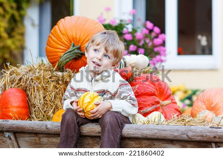 Little cute kid boy sitting with different pumpkins on halloween or thanksgiving harvest festival or patch, outdoors - stock photo