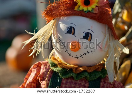 Little cute scarecrow - stock photo