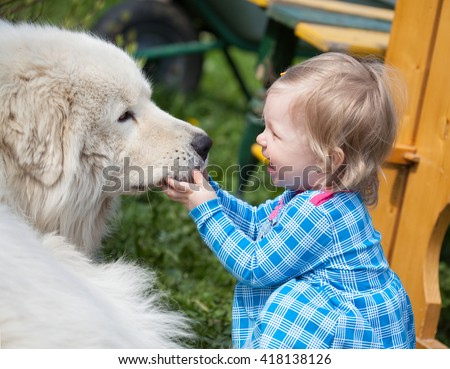 Little cute toddler girl playing with her big white shepherd dog in summer, selective focus - stock photo
