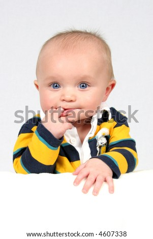 Little Cutie taken closeup - stock photo