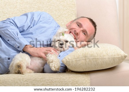 Little dog maltese with his owner on the sofa in home - stock photo