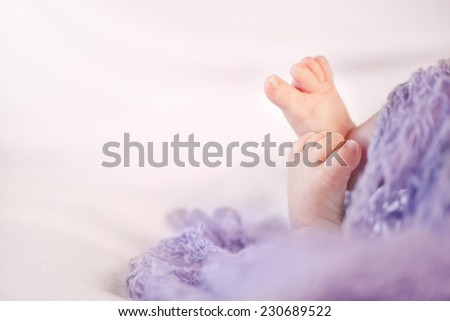 Little feet of a newborn baby girl with copy space - stock photo