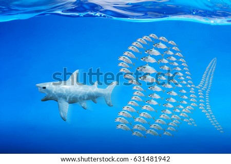 Little fishes unite fight with big fish. a metaphor on teamwork