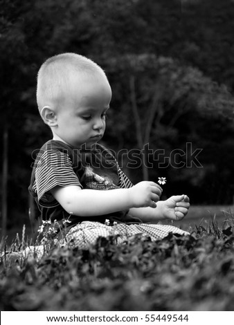Little florist, portrait of a small boy with a daisy in his hand - stock photo