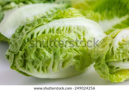Little gem lettuce on white. - stock photo