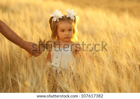 little girl and grandpa with a bouquet of wheat in the sunlight. outdoor shot - stock photo