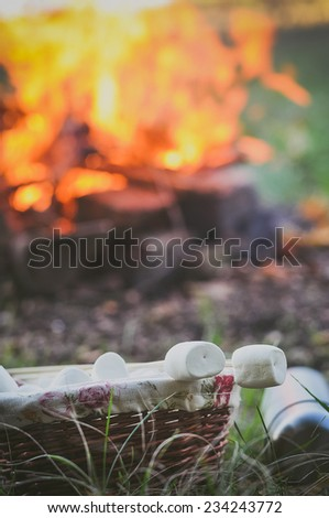 Little girl and her father roasting a marshmallow in the campfire - stock photo