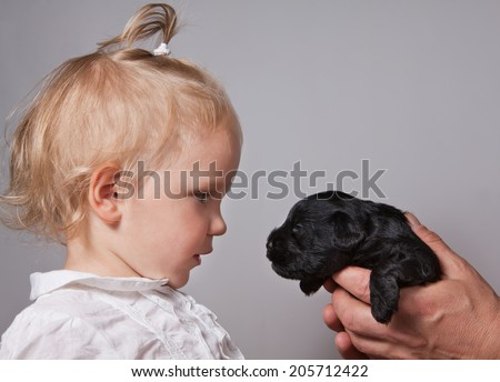 little girl and puppy dog watching on each other - stock photo