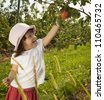 Little girl child picking apple at orchard - stock photo