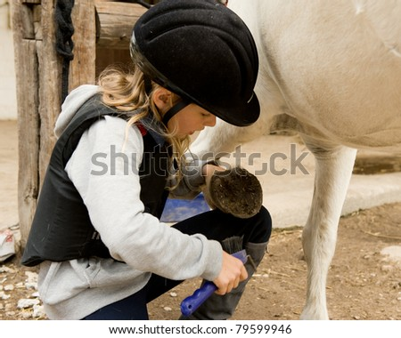 Little girl cleaning her pony - stock photo