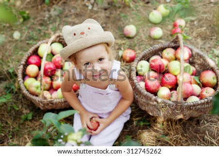 little girl collects the apples in the garden