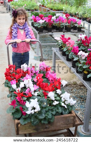 Little girl driven cart with beauty flower in the greenhouse - stock photo
