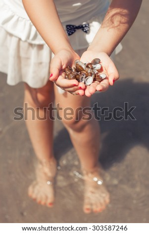 little girl exploring the seashore collecting shells on a sunny day