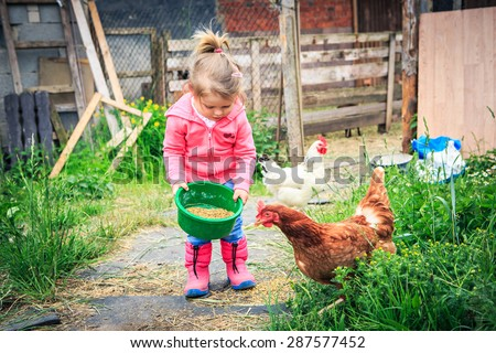 little girl feeding chickens in front of farm - stock photo