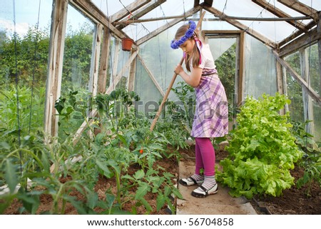 Little girl gardening, weeding in a greenhouse