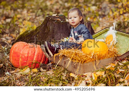 Little girl in nature sitting in open suitcase with hay. Outings - the forest in autumn. Nearby are large pumpkin and tree stump.