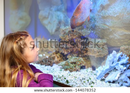 Little girl looks at big fish swimming in aquarium. Shallow depth of field. - stock photo