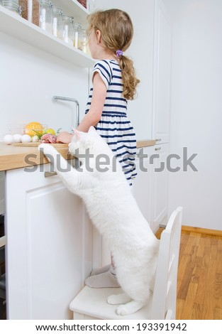 Little girl making meal in the kitchen. Cat stealing food. - stock photo