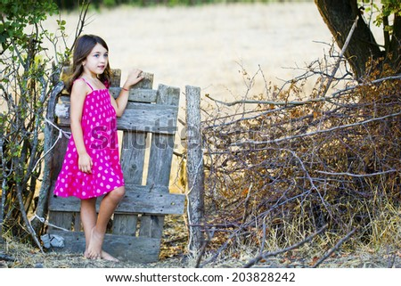 Little girl old wooden fence - stock photo