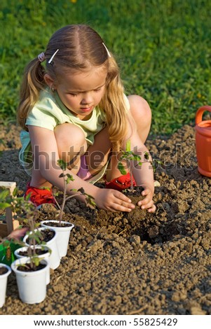Little girl planting seedlings in the late afternoon sunlight - healthy food concept - stock photo