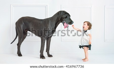 Little girl posing against a big dog - stock photo