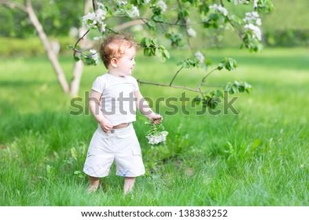 Little girl walking in an apple tree garden - stock photo