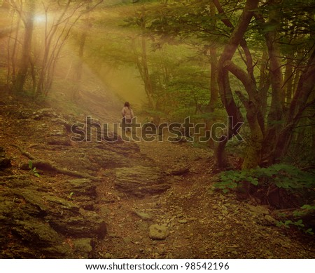 Little girl walking on the foggy woods. Vintage stylized - stock photo