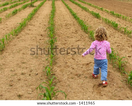 Little girl walking through a vegetable garden - stock photo