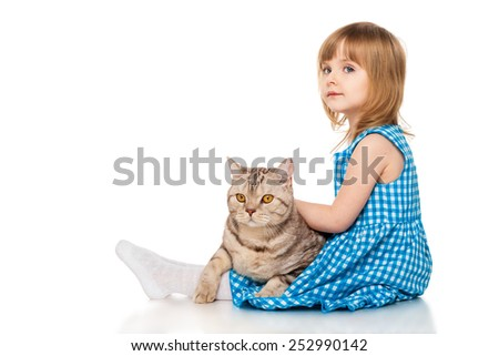 Little girl  with a British cat - stock photo