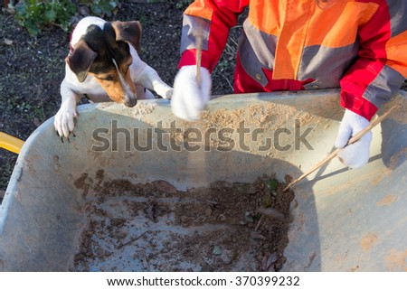 little girl with a dog looking at something in a wheelbarrow