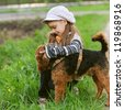Little girl with terrier in city park. - stock photo