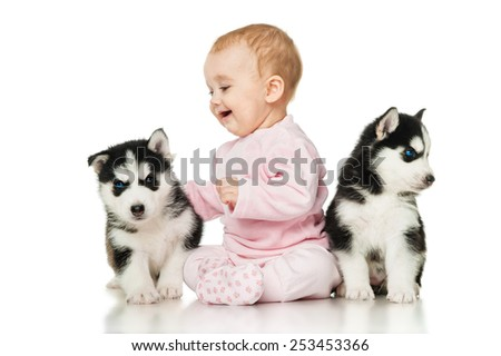 Little girl with two puppies husky - stock photo