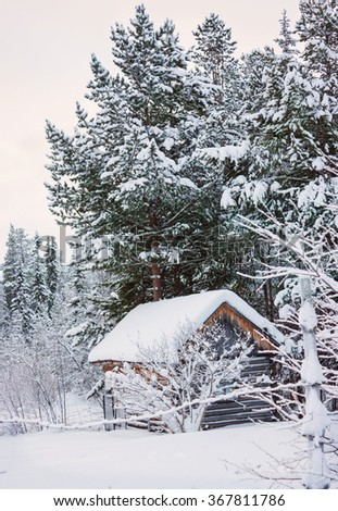 Little hut on the edge of the boreal forest - stock photo