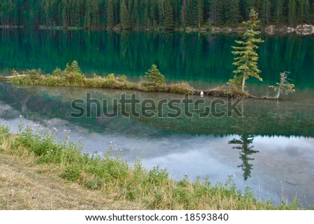 Little island in Two Jack Lake in Banff - stock photo