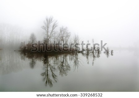Little island with trees,Minimalist Landscape - stock photo