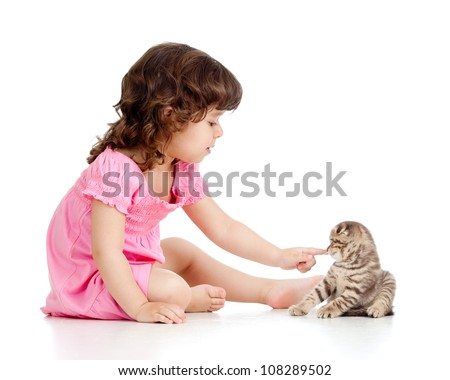 little kid playing with Scottish fold kitten - stock photo