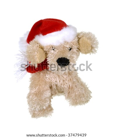 Little Merry Dog Dressed for Christmas Celebration; on white