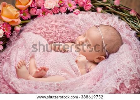Little newborn girl 11 days, sleeps. Beautiful newborn girl and flowers - stock photo