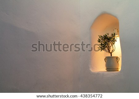 Little olive tree in flower pot into the stone wall of house. Free place for your design - stock photo