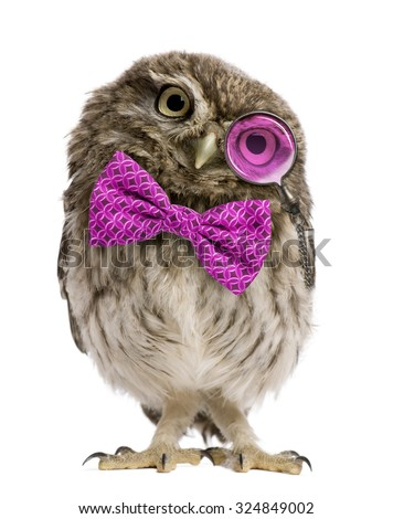Little Owl wearing magnifying glass and a bow tie in front of a white background - stock photo