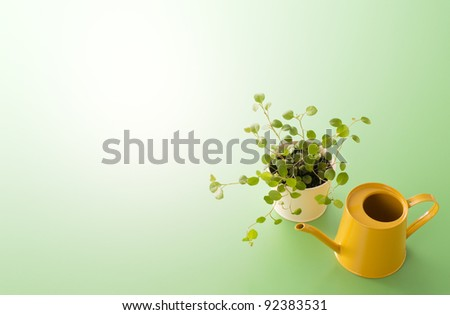 Little plant and a yellow watering can - stock photo