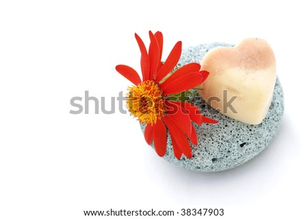 Little red flower and white heart