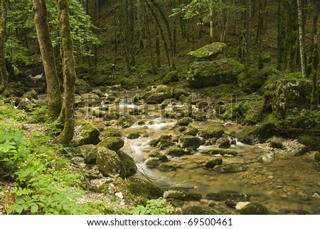 Little river in the Jura of France